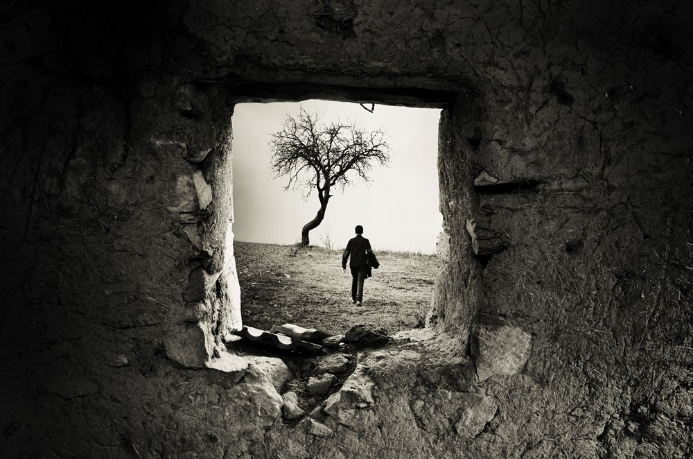 Behind the Old Window - Adrian Limani
